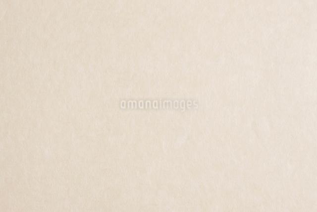 和紙の写真素材 [FYI01337696]