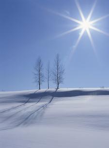 冬の美瑛の写真素材 [FYI01338000]
