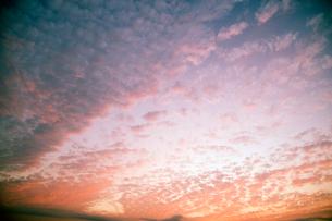 夕焼けのうろこ雲の写真素材 [FYI01338068]