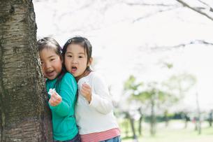 樹に寄り添う2人の女の子の写真素材 [FYI01338143]