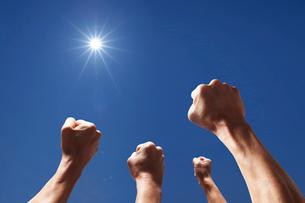 太陽に向かって強く突き上げられた4本の腕の写真素材 [FYI01339619]