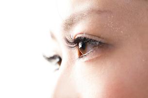 睫毛エクステーションをしている女性目元の写真素材 [FYI01339671]