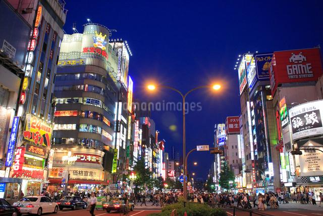 歌舞伎町の夜景の写真素材 [FYI01340116]