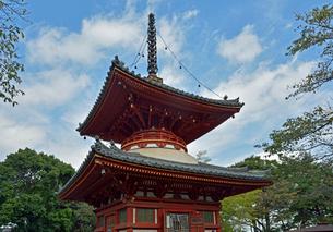 川越大師喜多院 多宝塔の写真素材 [FYI01340519]