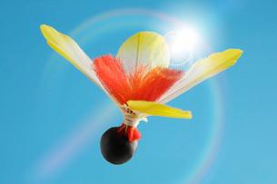 羽子板の羽根の写真素材 [FYI01341561]