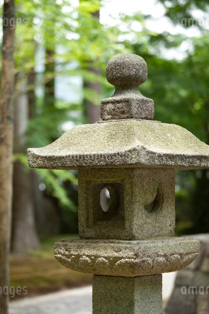 三千院の石灯籠の写真素材 [FYI01341770]