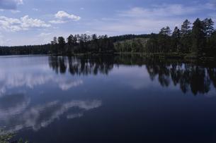 森林と湖の写真素材 [FYI01342502]
