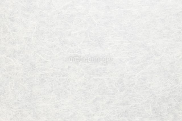 和紙の写真素材 [FYI01342571]