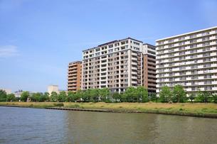 信濃川の写真素材 [FYI01343047]
