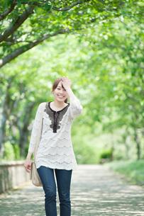 新緑の並木道を歩く女性の写真素材 [FYI01343229]