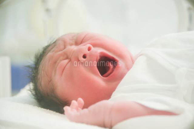 泣く新生児の写真素材 [FYI01343230]