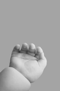 赤ちゃんの手の写真素材 [FYI01343325]