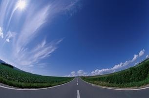 空 道 雲 空の写真素材 [FYI01343349]