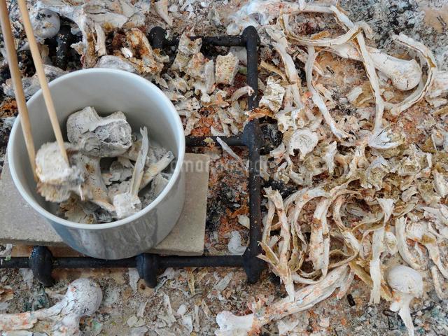 遺骨の骨上げの写真素材 [FYI01344474]