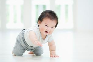 笑いながらハイハイする赤ちゃんの写真素材 [FYI01345435]