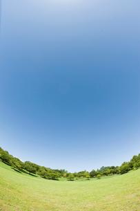 青空と芝生の公園の写真素材 [FYI01345466]