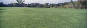 ゴルフ場の芝生の写真素材 [FYI01345679]