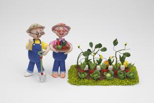 園芸をするシニア夫婦の写真素材 [FYI01346753]