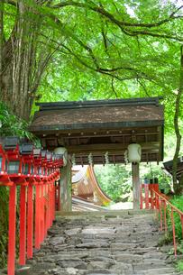 貴船神社 参道の門の写真素材 [FYI01347640]
