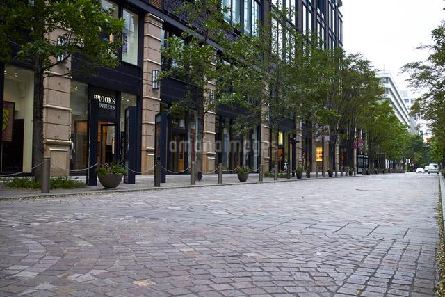 石畳のブティックのある道と並木の写真素材 [FYI01347685]