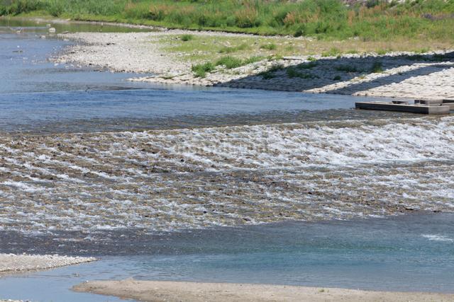 清流の瀬の写真素材 [FYI01347697]