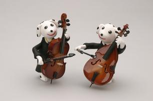 弦楽器を演奏する犬の写真素材 [FYI01347809]