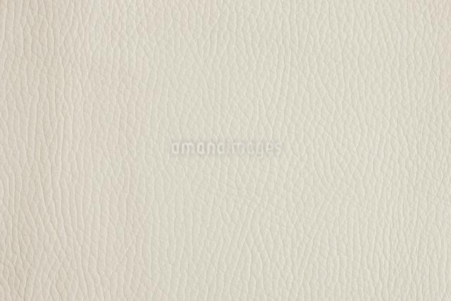 皮革の写真素材 [FYI01348499]