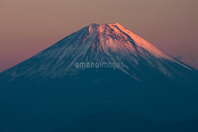 櫛形山からの夕日に染まる富士山の写真素材 [FYI01350149]