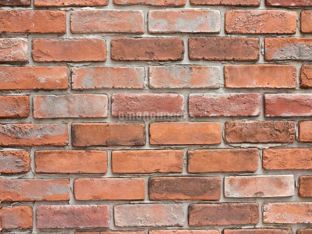 レンガの壁の写真素材 [FYI01350235]