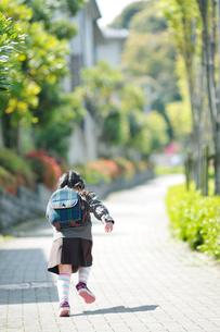 歩道を走る幼稚園児の後姿の写真素材 [FYI01350265]