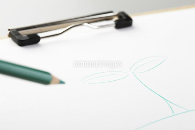 手書きの双葉の写真素材 [FYI01351188]