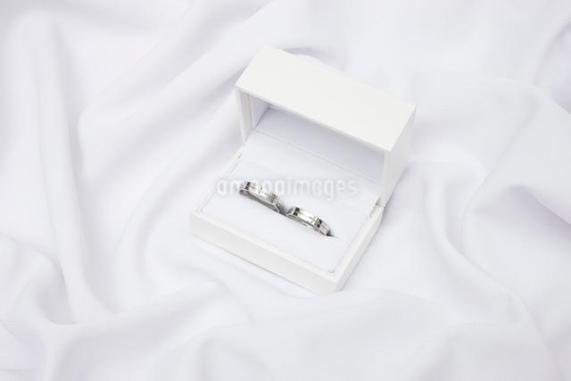 結婚指輪の写真素材 [FYI01351990]
