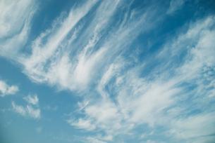 筋雲の写真素材 [FYI01352602]