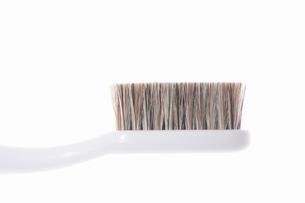歯ブラシの写真素材 [FYI01354477]