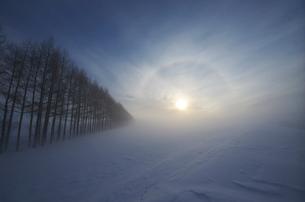 日輪と朝の大地の写真素材 [FYI01355103]
