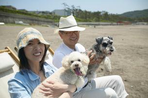 海辺でチェアに座るカップルと犬の写真素材 [FYI01355182]