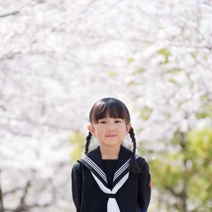 桜並木の幼稚園児の写真素材 [FYI01355360]