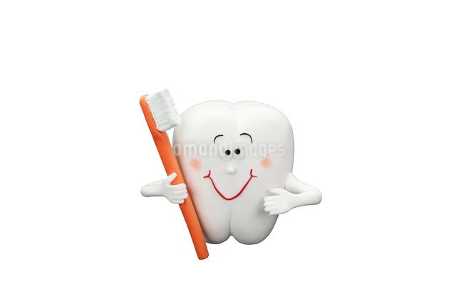 歯と歯ブラシの写真素材 [FYI01355661]