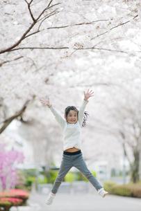 桜並木でジャンプする女の子の写真素材 [FYI01355770]