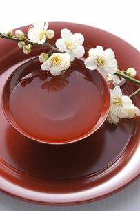 梅の花と杯の写真素材 [FYI01355889]