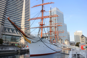 帆船日本丸の写真素材 [FYI01356103]