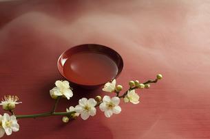 梅の花と盃の写真素材 [FYI01356501]