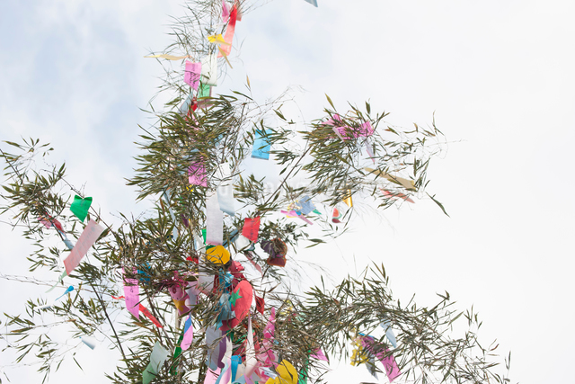 機物神社七夕祭りの写真素材 [FYI01356687]