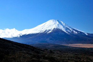 富士山の写真素材 [FYI01356828]