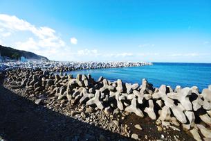 下風呂漁港のテトラポットの写真素材 [FYI01357248]