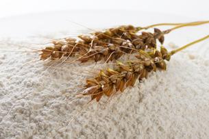 小麦と小麦粉の写真素材 [FYI01357622]