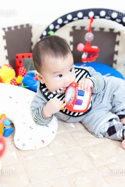 赤ちゃんの写真素材 [FYI01357739]