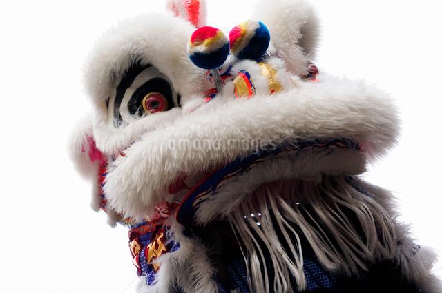 中華街の春節パレードの獅子舞の写真素材 [FYI01357761]