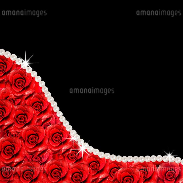 バラの花と真珠の写真素材 [FYI01357784]