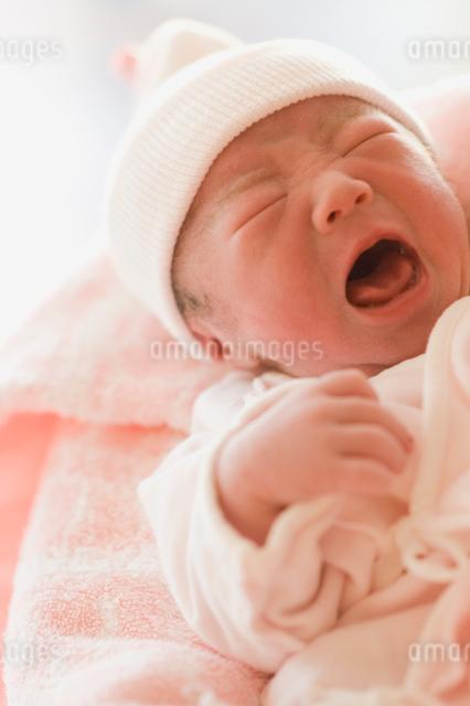 産声をあげる新生児の写真素材 [FYI01358541]